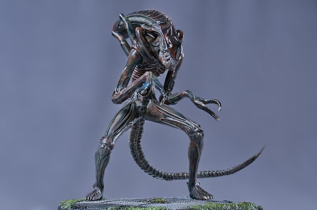 alien par smugmug 1072540640_o2GRC-XL