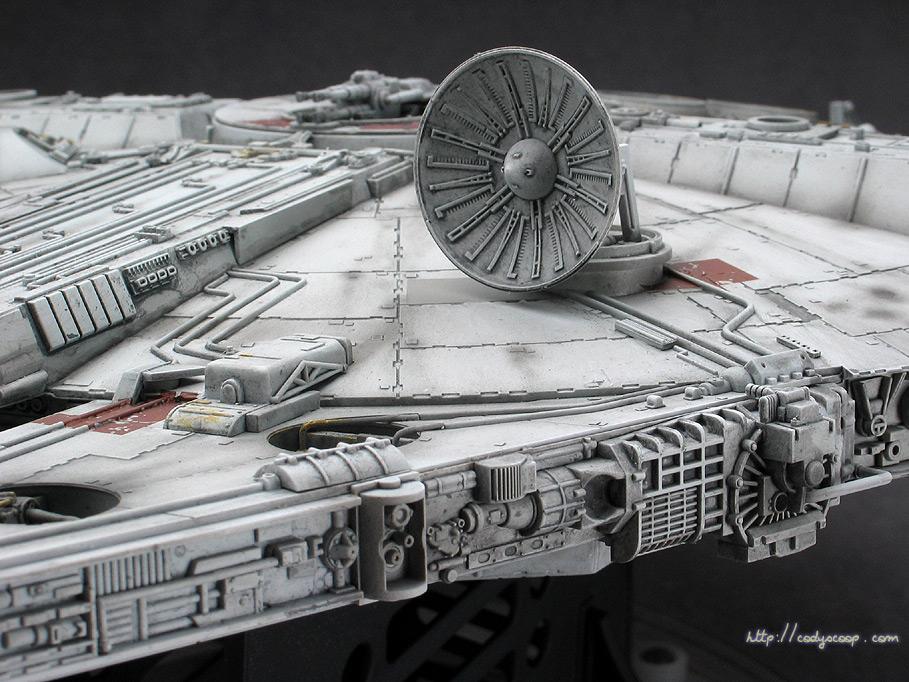 falcon_0026